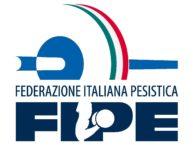 Logo-Fipe